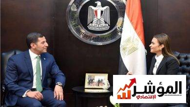 صورة تعيين محمد عبدالوهاب قائمًا بأعمال رئيس الهيئة العامة للاستثمار