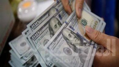 صورة خالد الشافعي: الوضع الاقتصادي حاليا مستقر و لا يستدعى وجود سعر للمحاسبة الجمركية وسعر للمحاسبة المصرفية