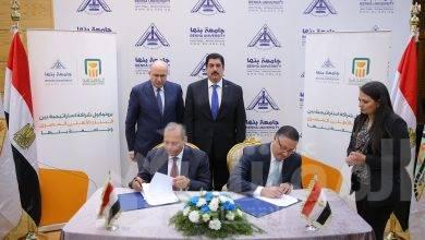 """صورة بروتوكول شراكة استراتيجية بين """" البنك الأهلي المصري """"وجامعة بنها"""