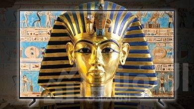 """صورة """" سامسونج """"  تعلن عن تصنيع شاشات التليفزيون QLED 8K لأول مرة في مصر"""