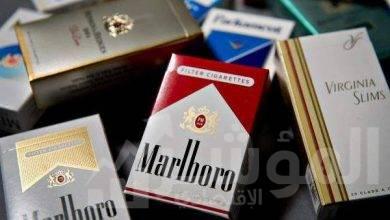صورة فيليب موريس مصر تطلق النسخة الــ 5 من حملة مكافحة التدخين للشباب دون السنّ القانوني