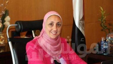 صورة إلغاء ترخيص الشركة المصرية SNS لمزاولة نشاط التوقيع الإلكتروني