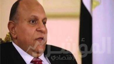 """صورة مصر هتعدي"""" توفر 10 آلاف فرصة عمل من المنازل للشباب"""