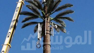 """صورة """" اتصالات مصر"""" تبني شبكة جديدة في72 ساعةفي مرسي علم"""