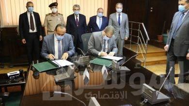 صورة شركة السويدي اليكتريك للتجارة والتوزيع وقعت عقد بقيمة 475 مليون جنية مصري بالوادى الجديد