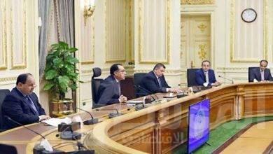 صورة رئيسالوزراء يُتابع الموقف التنفيذى لبرنامج التنمية المحلية بالصعيد
