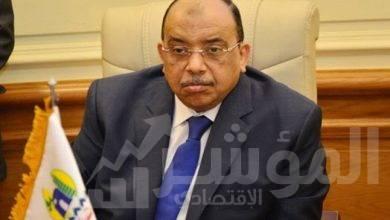 صورة إسهام برامج التنمية المحلية في الارتقاء  بالمستوى الاقتصادي والاجتماعي للمواطن المصري