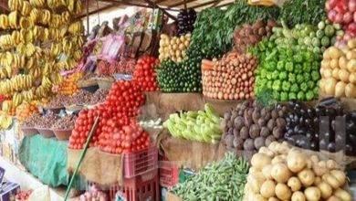 صورة تراجع أسعار الفاكهة من  30– 50 % بالأسواق