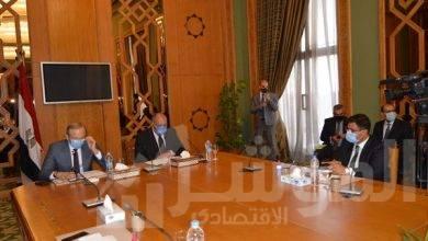 صورة الفيديو كونفرانس.. وزير الخارجية يشارك في ندوة حول الدبلوماسية المصرية وتحدياتها الراهنة