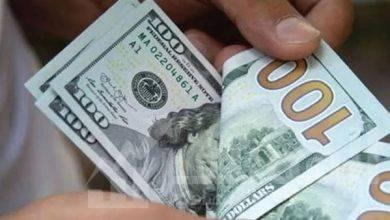 صورة سعر العملة الخضراء مقابل الجنيه المصري اليوم الأحد