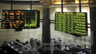 """صورة """"السعودية المصرية """"تخفض حصتها في شركة العربية لحليج الأقطان"""