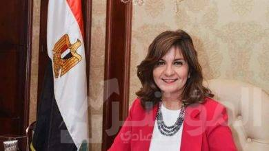"""صورة """"مكرم"""" تستعرض خطوات تصويت المصريين بالخارج في انتخابات مجلس الشيوخ"""
