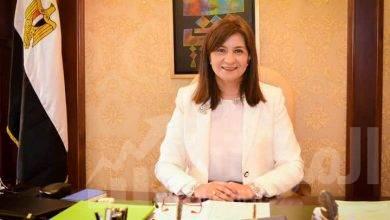 صورة وزيرة الهجرة تدعو المصريين بالخارج للمشاركة في انتخابات مجلس الشيوخ
