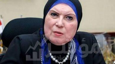صورة وزيرة التجارة والصناعة تبحث مع السفير الإيطالى بالقاهرة تفعيل برامج التعاون التنموى بين البلدين