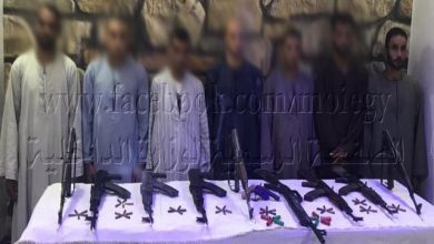 صورة ضبط 10 قطع سلاح ناري وتنفيذ 6 قرارات إزالة بأسيوط