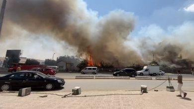 صورة النيابة تحقق في اندلاع حريق شب بحديقة بالقرب من نادي الرماية