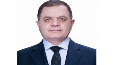 صورة بالأسماء.. وزير الداخلية يسمح لـ20 مواطنًا بالتجنس بجنسيات أجنبية