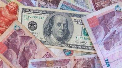 صورة صمود الدولار أمام الجنيه في بداية تعاملات اليوم الاحد