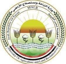 صورة الزراعة: 37.5 مليون جنيه تمويل جديد لمشروع البتلو