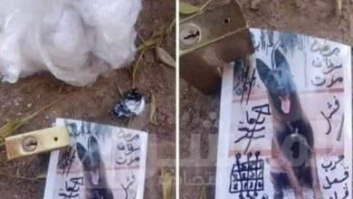 "صورة مقابر سوهاح تبوح "" بأسحارها """