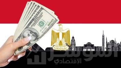 صورة مصر تتصدر الدول العربية المستقبلة للاستثمار الأجنبي المباشر حصة 35.2%