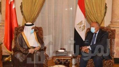 صورة بيان مُشترك عن جلسة المباحثات الرسمية بين وزيري خارجية مصر والبحرين
