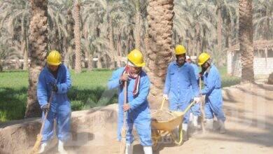 صورة تمويل جهاز تنمية المشروعات للمشروعات كثيفة العماله
