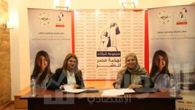 صورة داليا ابراهيم:الدعم المستمر للمجتمع المصرى فى شتى المجالات