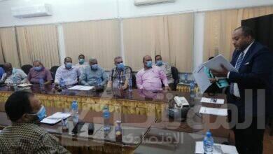 صورة وزارة قطاع الأعمال العام: بدء تدريب العاملين بالشركات على برنامج التحول الرقمي