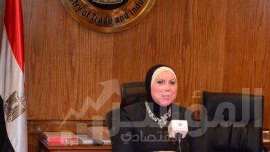 صورة وزيرة التجارة والصناعة تصدرقراراً بوقف استيراد السيراميك والبورسلينلمدة 3 أشهر