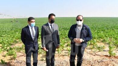 صورة السيسى يتفقد مشروع مستقبل مصر للإنتاج الزراعي