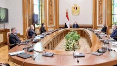 صورة السيسي يتابع محاور تطوير منظومة القطن المصري من زراعة وإنتاج وصناعة
