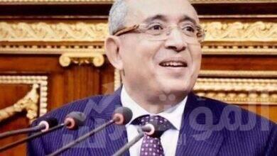 صورة ياسر عمر يطالب الحكومة بتنفيذ توصيات الحوار المجتمعي بمشروعات المنطقة البترولية باسيوط