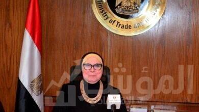 صورة وزيرة التجارة تلقي كلمة مصر في ندوة دور المرحلة الثانية من برنامج مبادرة المساعدة من اجل التجارة للدول العربية
