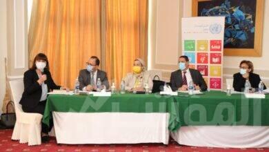 صورة فؤاد : مصر حققت خطوات مهمة في اجراءات مواجهة تغير المناخ سياسيا واستراتيجيا