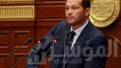 صورة الاصطفاف خلف الرئيس يجسد قوة مصر وقدرتها على حسم ملف سد النهضة
