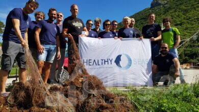 """صورة هيونداي موتورز تعقد شراكة مع منظمة""""البحار الصحية"""""""
