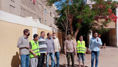 صورة مستقبل وطن أسيوط يٌطلق فعاليات اتحضر للاخضر