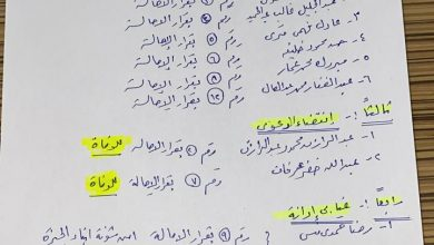 صورة جنايات جنوب الجيزة تقضي ببراءة عبدالغفار السلاموني من قضية فساد القمح الكبرى