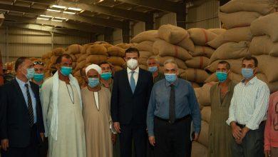 صورة علاء فارق :توريد 504 ألف طن قمح بشون البنك الزراعي المصري  منذ بدء موسم توريد القمح