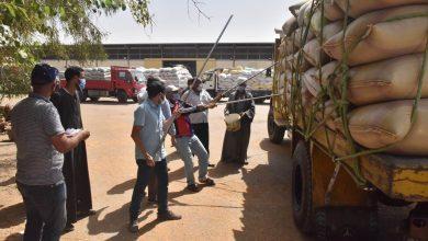 صورة توريد 152 ألف طن قمح لـ 28صومعة وهنجر وشون بالمراكز في أسيوط