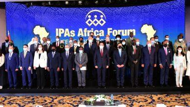 صورة شكري امام منتدى رؤساء هيئات الاستثمار بالدول الأفريقية: المنتدي يُعزز الحوار المباشر وتبادل الخبرات بين جميع الأطراف المعنية بالاستثمار في أفريقيا.