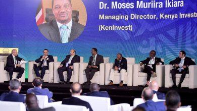 صورة الرئيس التنفيذي  لترويج الاستثمار الغاني :   مطلوب  موقف مو حد لهيئات الاستثمار  فى كل دولة من دول  القارة الإفريقية