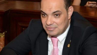 صورة علاء قريطم الانفتاح الاقتصادي والصناعي الروسي على مصر ثمرة للعلاقات المتميزة مع روسيا في عهد السيسي