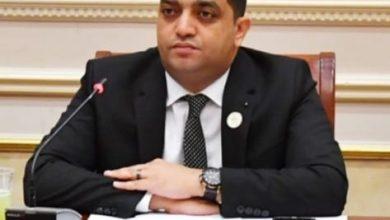 صورة محمد سعيد الدابي 30 يونيو فرقت بين الحق والباطل وعلامة فارقة في تاريخ الوطن