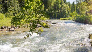 صورة نستله للمياه تتبنى عدد من المشروعات لتحسين منظومة المياه والمساعدة في تجديد الأنظمة المحلية