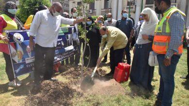 صورة محافظ أسيوط يغرس بعض الاشجار ضمن فعاليات يوم البيئة العالمى