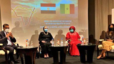 صورة جهاز تنمية المشروعات يدعم المشروعات الصغيرة في القارة السمراء لدفع عجلة العمل الأفريقي المشترك