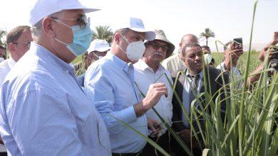 صورة البنك الزراعي يطلق مبادرة لتمويل تكاليف إنشاء حقول استرشادية للري الحديث بمحافظات الصعيد