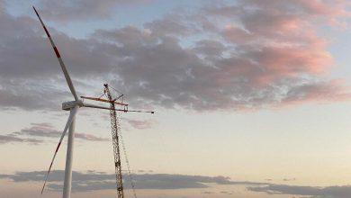 صورة بدء تشغيل أول 20 توربيناً من مشروع غرب بكر لطاقة الرياح متصلة بشبكة الكهرباء